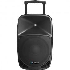 12-Inch Powered Speaker