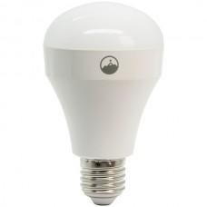 Wi-Fi(R) LED Light Bulb (Single)