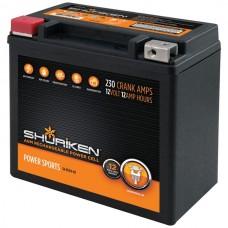 230 Crank Amps 12Ah AGM Powersports 12-Volt Battery