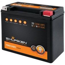 310 Crank Amps 18Ah AGM Powersports 12-Volt Battery