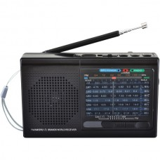 9-Band Rechargeable Bluetooth(R) Radio with USB/SD(TM) Card Input (Black)
